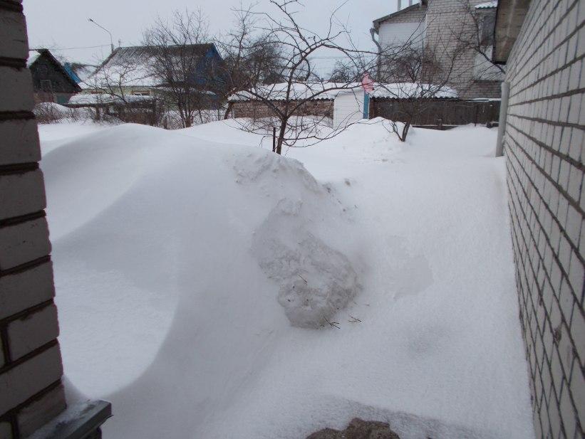 Лукашенко призвал ЖКХ организовать людей на уборку снега