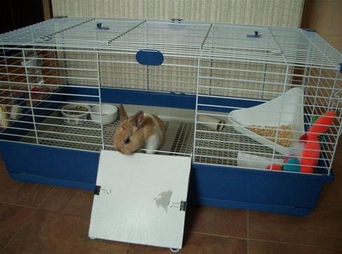 выбрать клетку для кролика