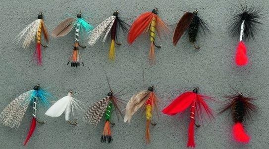 Как ловить рыбу на мушку?