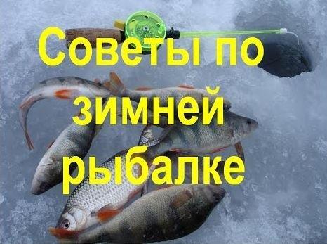 Зимняя рыбалка: советы опытных рыбаков.