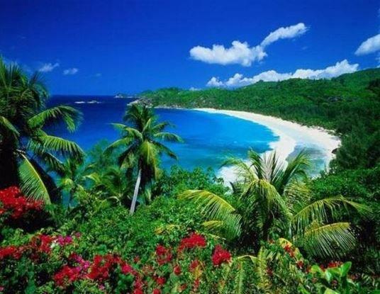 Самые красивые места Сейшельских островов.