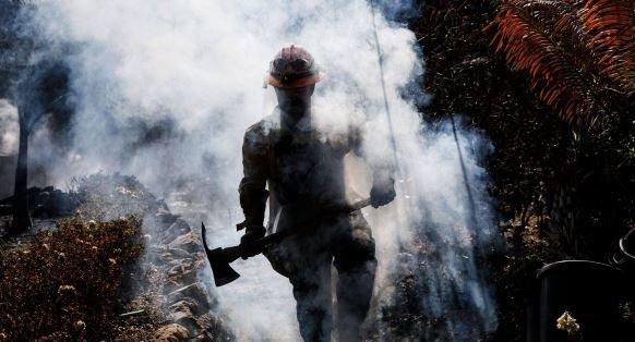 пожаров в Калифорнии