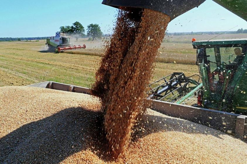 В этом году белорусские аграрии планируют собрать 7,6 млн тонн зерна