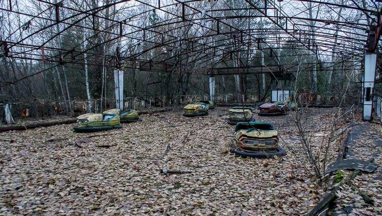 Смертельно опасный предмет нашли в лесу возле Припяти