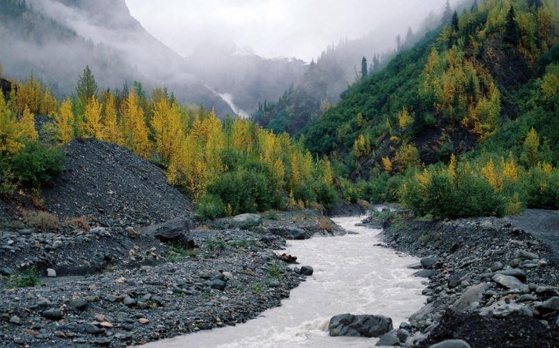 аляска, река, гибель, течение, поток, происшествия
