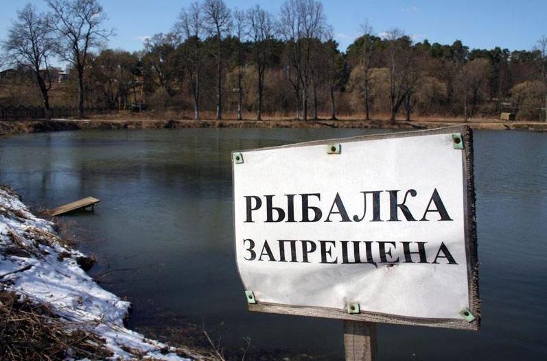 запрет ловли рыбы, рыбалка, нерест, беларусь, штрафы, закон