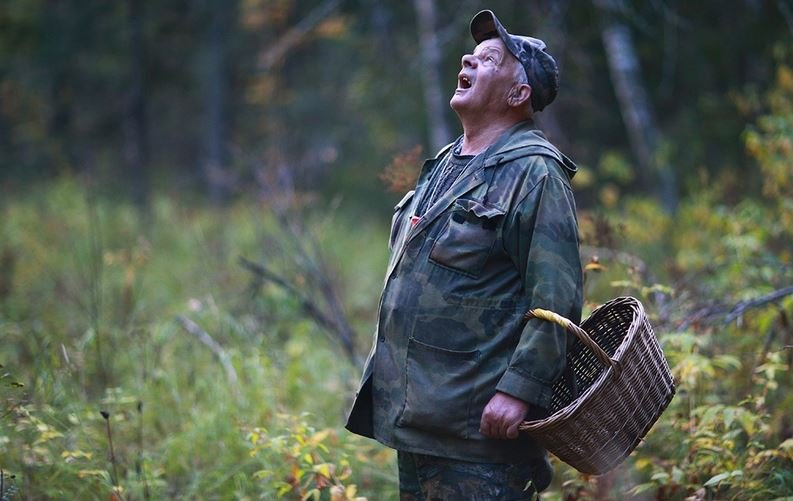 В Витебском районе пропал 81-летний грибник