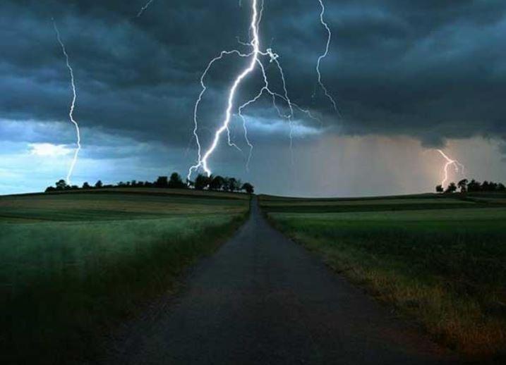 рогачевский район, пастух, молния, смерть, коровы