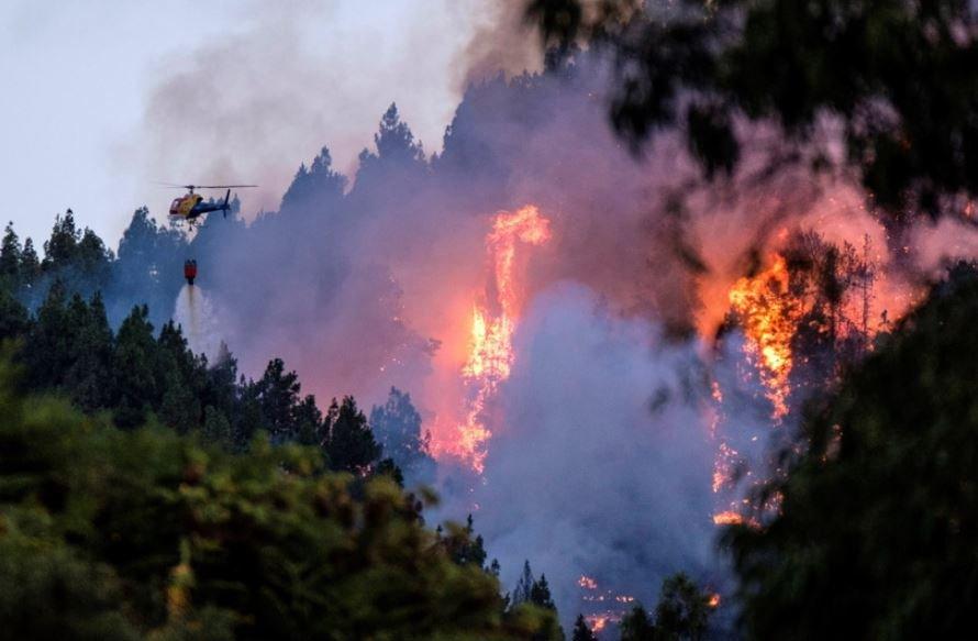 Гран-Канария, пожары, эвакуация, бедствие, огонь, леса, спасатели
