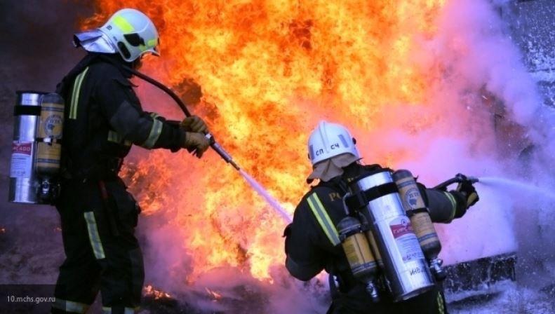 березовский район, синевичи, пожар, спасатели, мчс, погибшие, возгорание