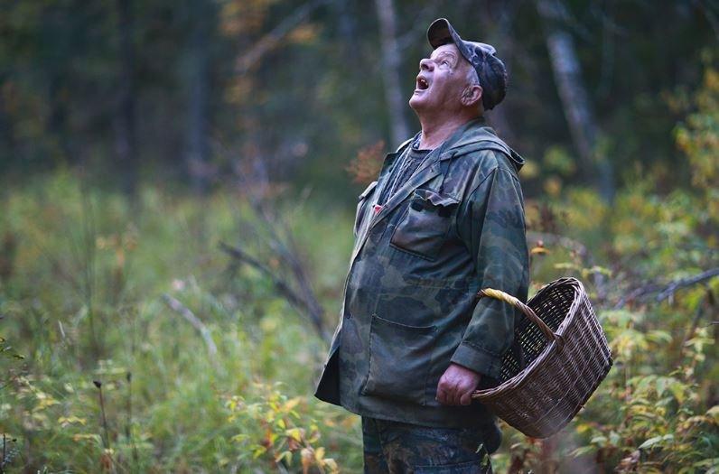 грибник, витебская область, поиск, потеря, россия, смоленск, военные, милиция
