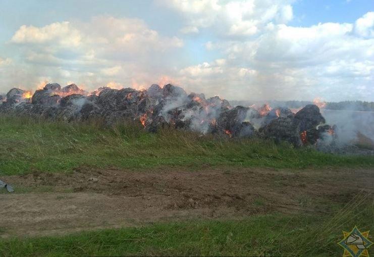 деревня Сеньковщина, Бешенковичский район, скирда, салома, пожар, ущерб, мчс
