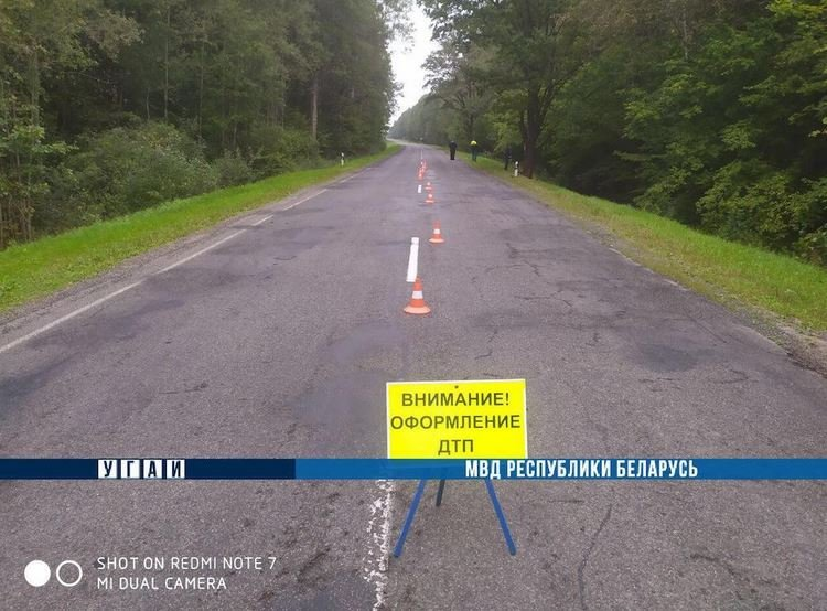 Девушка погибла в результате пьяного ДТП на трассе Быхов-Белыничи
