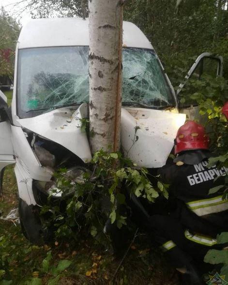В Лепельском районе Мерседес врезался в дерево