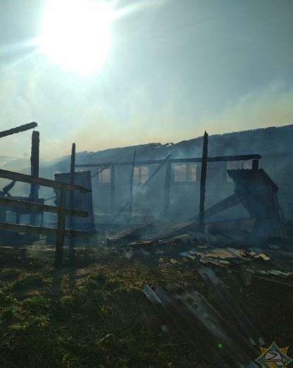 В Копыльском районе сгорел телятник