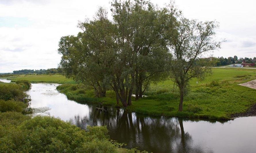 В реке Чечера нашли тело пропавшей 4 дня назад гомельчанки