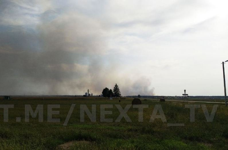 В Хойникском районе в чернобыльской зоне локализовали горящий лес