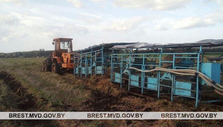 В Ивацевичском районе тракторист задавил животновода