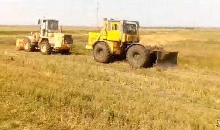 В Добрушском районе фура съехала в кювет из-за косули