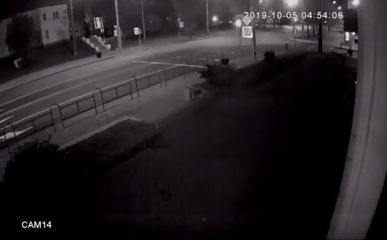 В Могилеве парень разбил входную дверь магазина