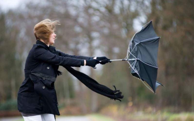 В Беларуси объявлен оранжевый уровень опасности из-за сильного ветра