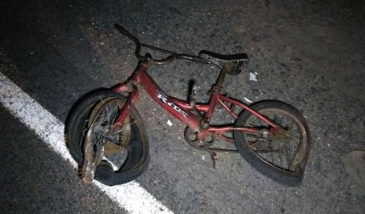 В Столинском районе грузовик насмерть сбил 8-летнего велосипедиста