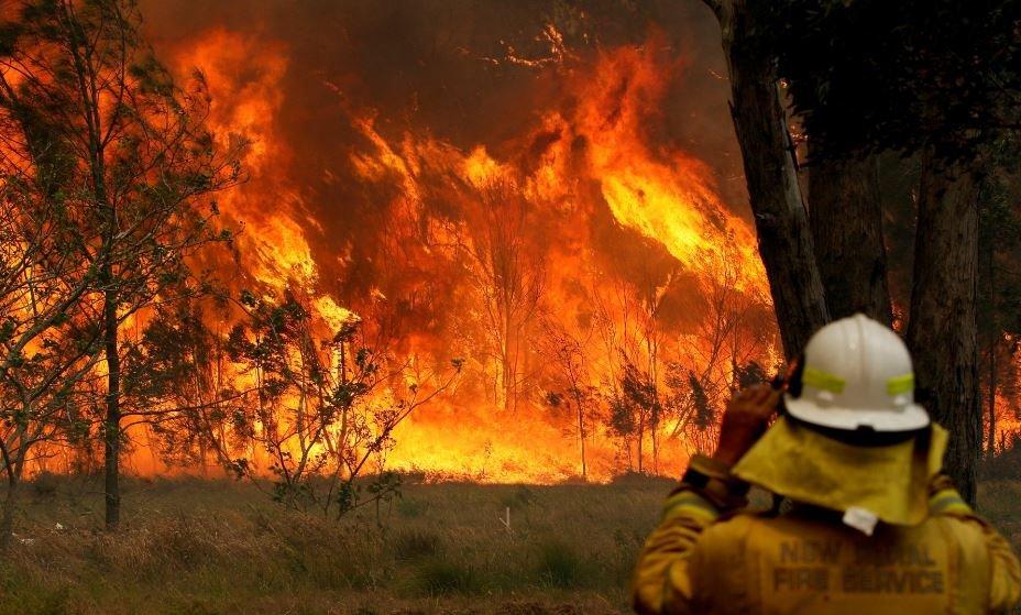В Австралии из-за пожаров исчезают целые города