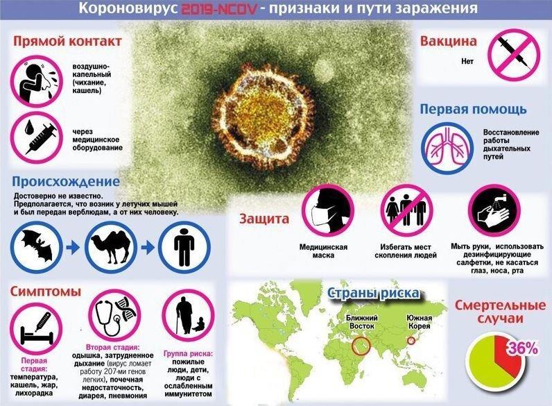 коронавирус, симптомы, лечение, последние новости, китай, февраль, 2020
