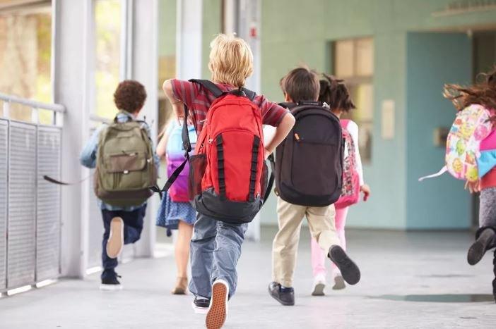 В школах Минска отменили летнюю трудовую практику