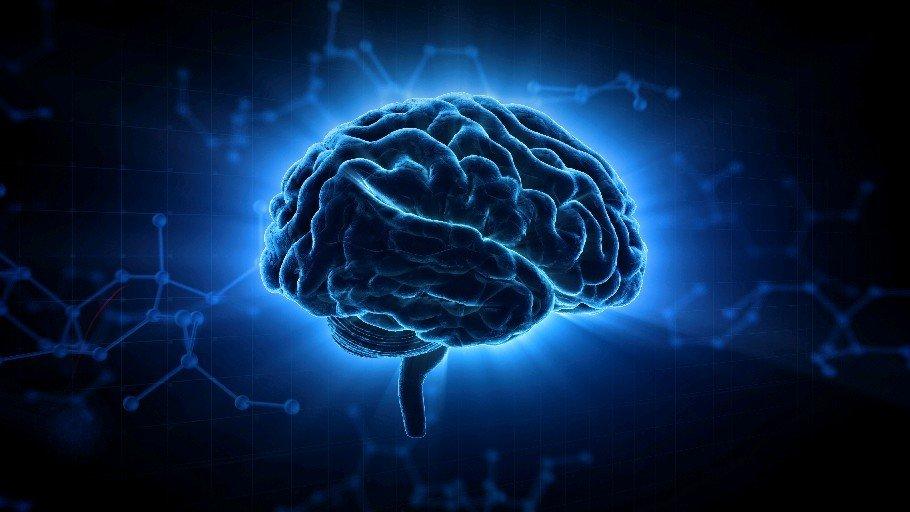 Ученые установили пользу яблок на развитие памяти