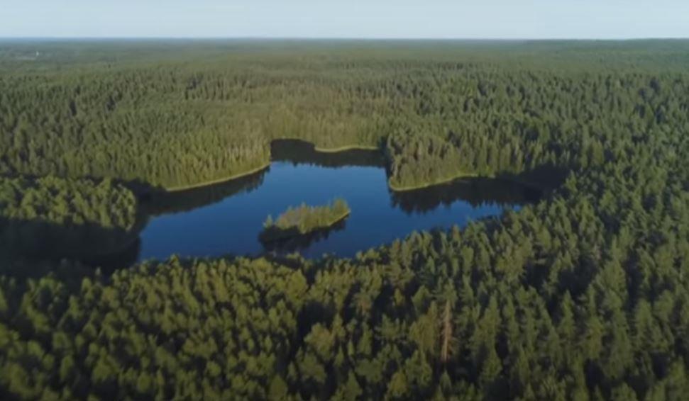 Киркоров, Басков и другие артисты записали клип в поддержку Лукашенко