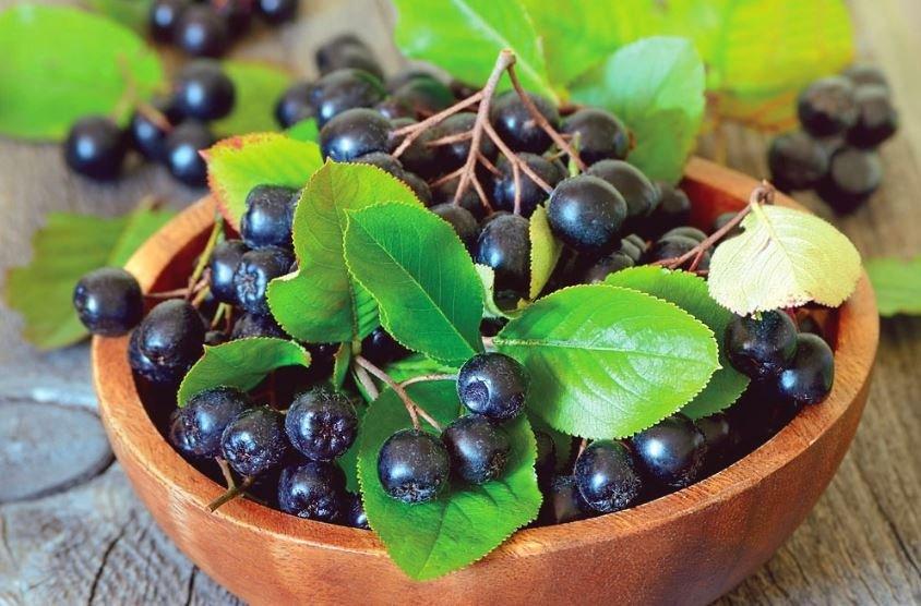 Ученые установили пользу соков растений и зеленого чая в подавлении коронавируса и гриппа