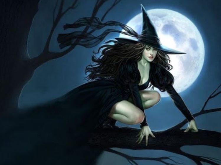 А вы отличите шамана от ведьмы?