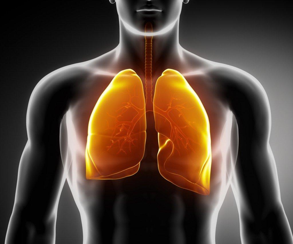 Мелатонин действует как естественный барьер против SARS-CoV-2