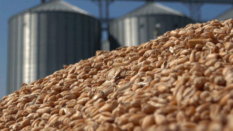 Беларусь перенаправит экспорт агропродукции в Россию и Китай в случае санкций