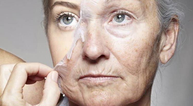 Американские ученые назвали три этапа старения человека