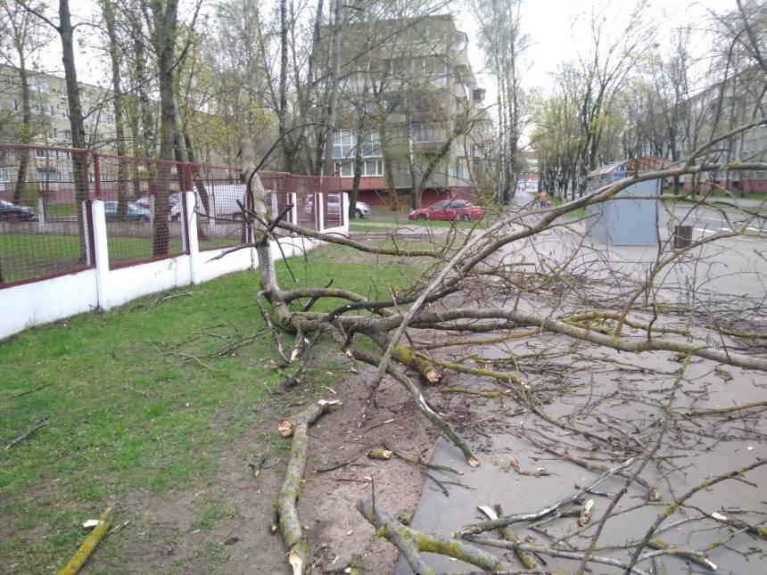 На 6 мая в Беларуси объявлен оранжевый уровень опасности из-за сильного ветра