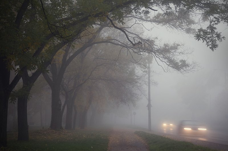 В Беларуси объявлен оранжевый уровень опасности из-за сильных туманов