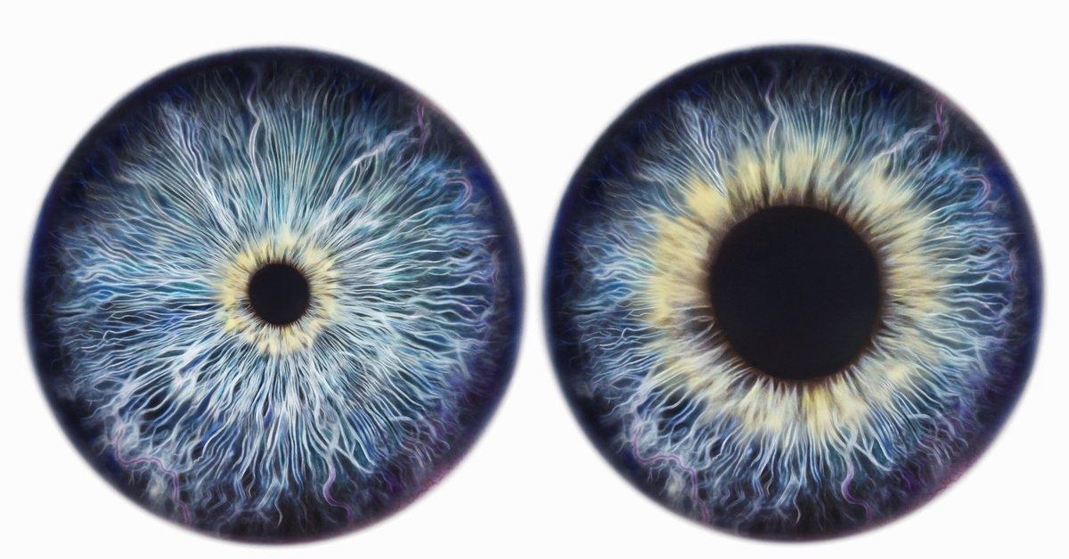 Исследования ученых показали, что большие зрачки являются показателем высокого интеллекта