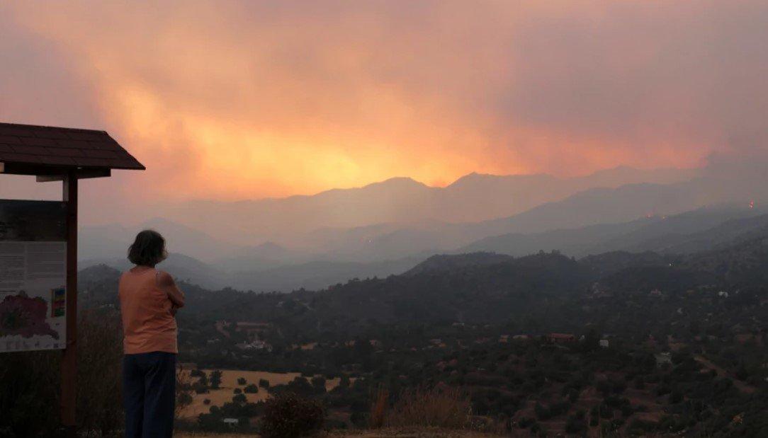 На Кипре начался крупнейший в истории страны пожар