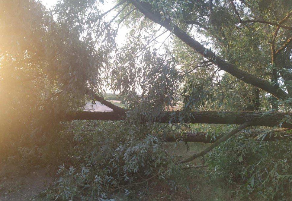 64 населенных пункта остались без света из-за гроз в Беларуси