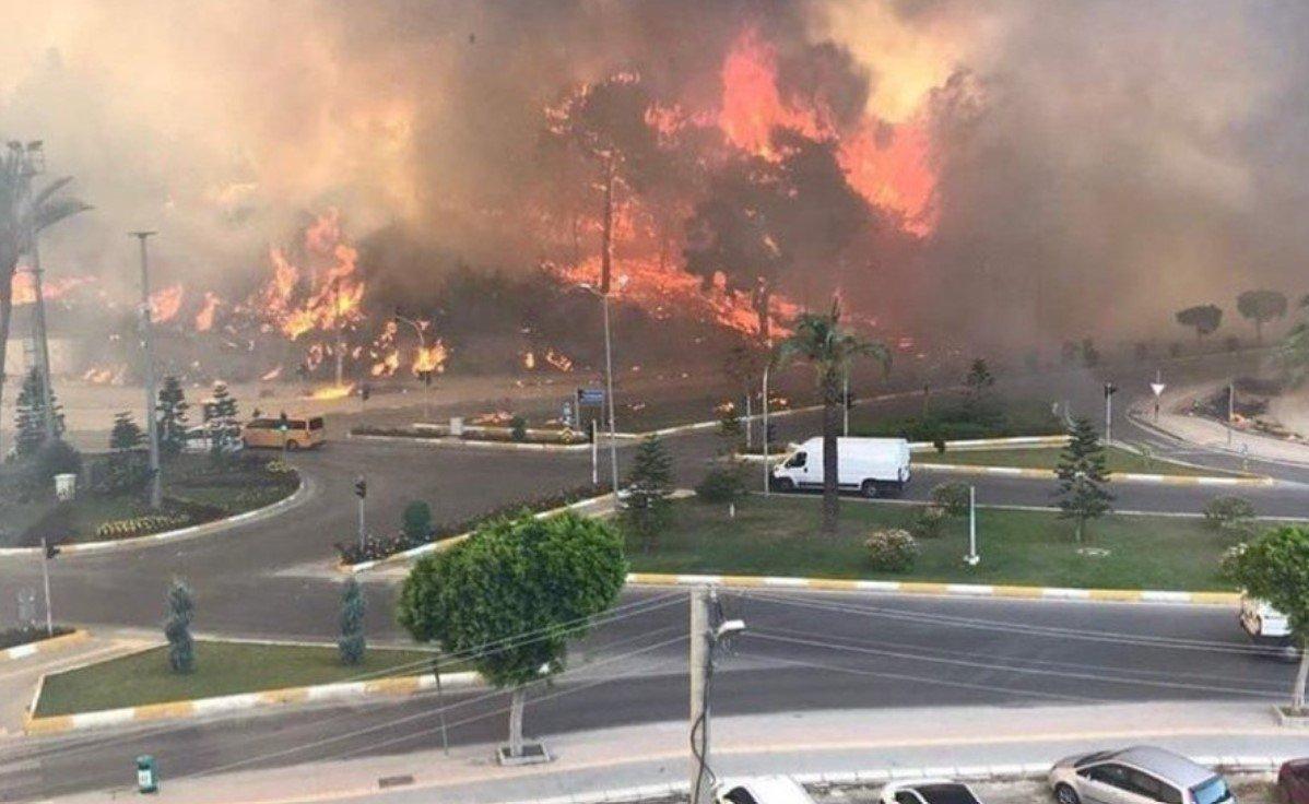 В результате крупного лесного пожара в Анталье пострадали 53 человека