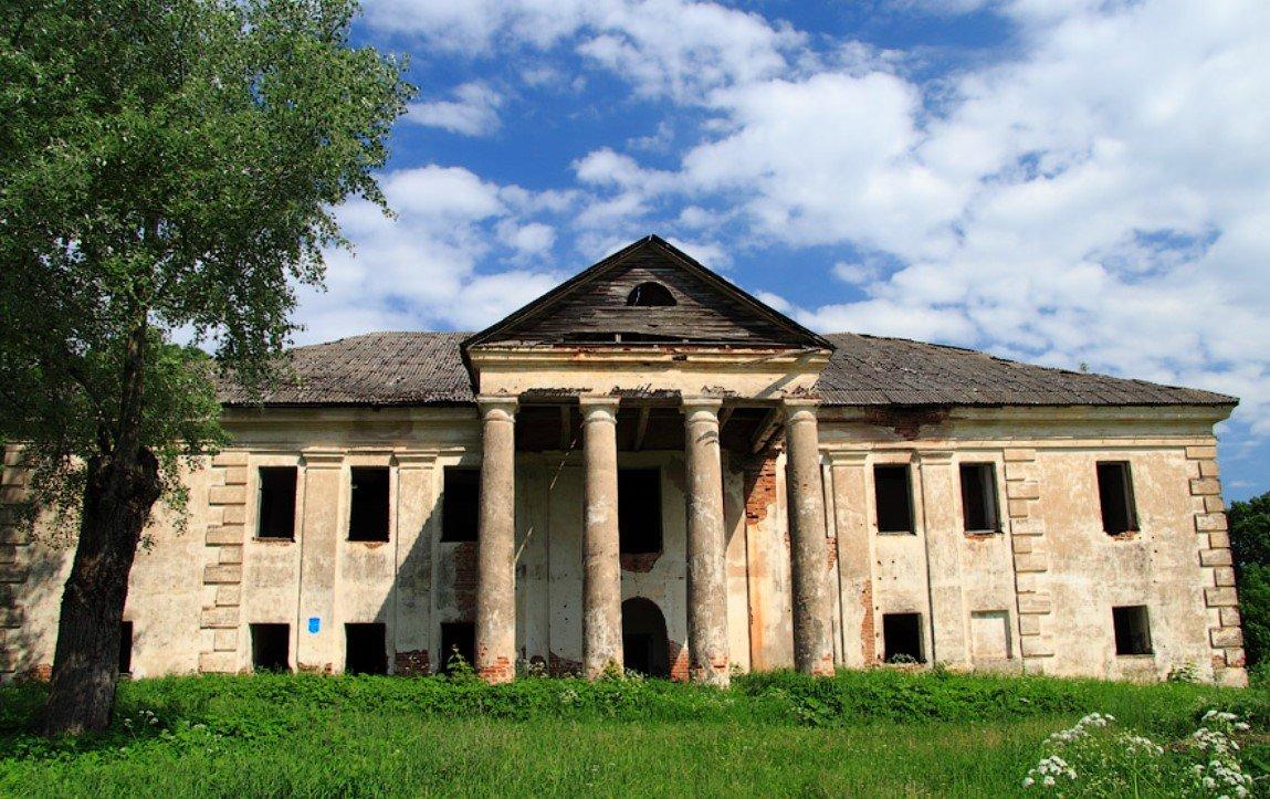Усадьбу Рудницких XIX века выставят на аукцион за 29 рублей