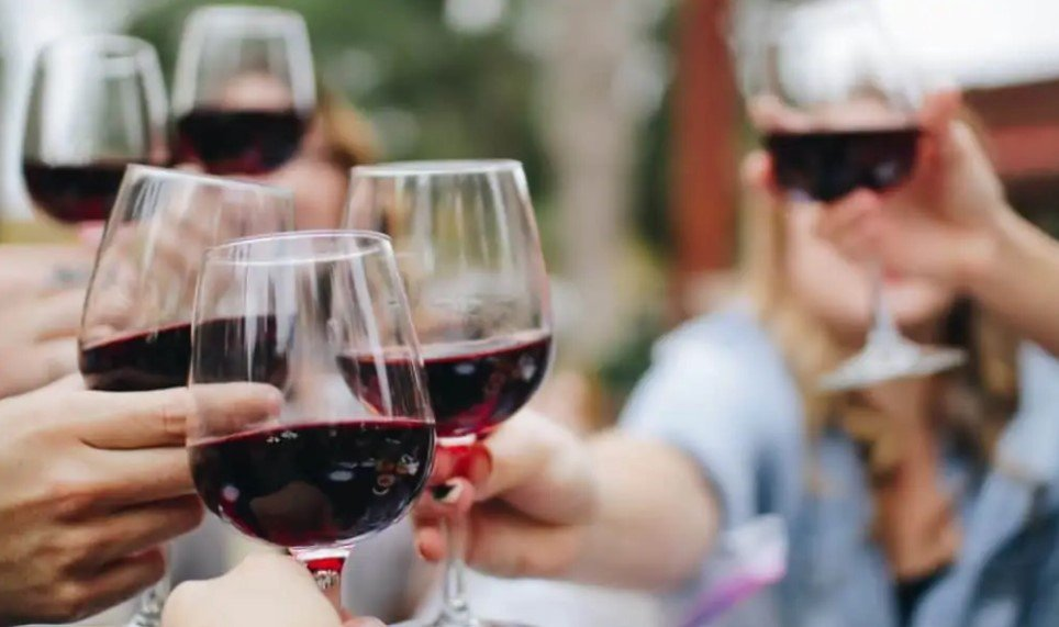 Руководство по хранению и выбору бокалов для вина